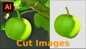 How to Cut Out an Image in Illustrator Using Pen Tool