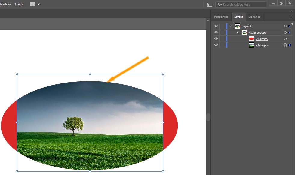 Resized Tree Image